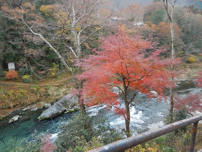 秋の紅葉デート御岳渓谷ハイキングデート2