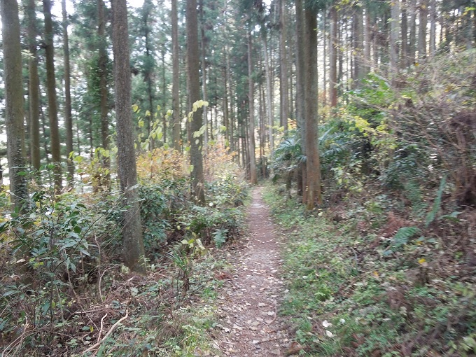 秋の紅葉デート御岳渓谷ハイキングデート4