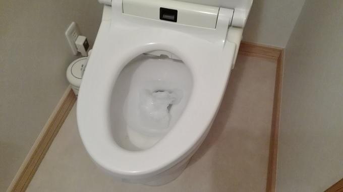 ゴキブリを洗剤で一瞬で一人暮らしでも簡単に退治する最強な方法・対策・駆除4