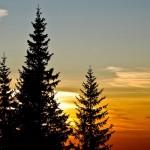 早起きは三文の徳というが、あなたは今までにどんな徳を体験したことがあるか?