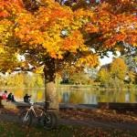 私が行った秋の紅葉が楽しめる関東のデートスポット