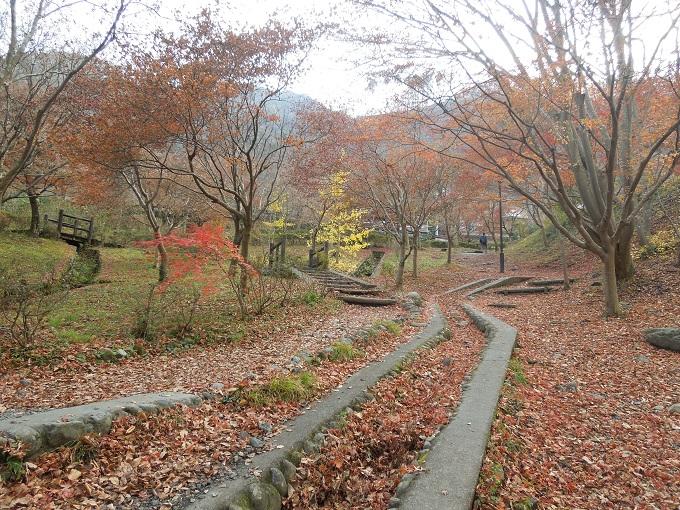 秋の紅葉デート御岳渓谷ハイキングデート5