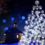 クリスマスのディズニーは入場制限になるほど混むから日時指定チケットを買うべき